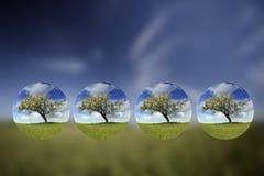 globes à l'intérieur de petit été d'horizontal Image libre de droits