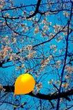 Globo amarillo Imagen de archivo libre de regalías