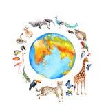 Globo, animali selvatici, uccelli - giraffa, ghepardo, tucano, fenicottero ed altro del mondo Zoo, acquerello della fauna selvati illustrazione di stock