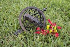 Globo bronzeo su un campo di erba verde Immagini Stock