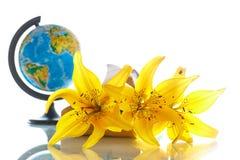 Globo con i libri ed i fiori Immagine Stock Libera da Diritti