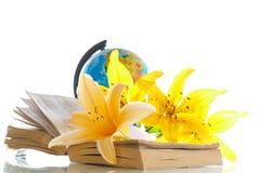 Globo con i libri ed i fiori Fotografia Stock Libera da Diritti