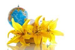 Globo con i libri ed i fiori Immagine Stock