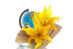 Globo con i libri ed i fiori Fotografia Stock