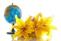 Globo con i libri ed i fiori Fotografie Stock