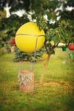 Globo con una cesta Foto de archivo libre de regalías