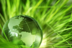 Globo de cristal en hierba Imágenes de archivo libres de regalías
