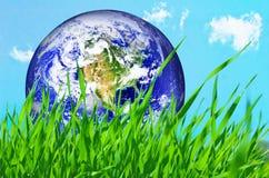 Globo de la tierra en hierba verde fotografía de archivo