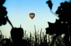 Globo del aire caliente en el cielo del verano visto de bosque Imagenes de archivo