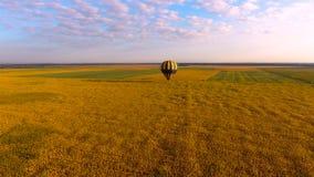 Globo del aire caliente que vuela bajo sobre el campo amarillento contra el cielo azul, visión aérea almacen de video
