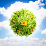 Globo del fiore e dell'erba immagini stock