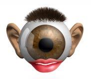 Globo del ojo con los oídos, los labios y el pelo Fotografía de archivo
