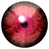 Globo del ojo rojo animal, textura del ojo de la rana stock de ilustración