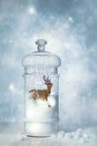 Globo della neve di inverno Fotografia Stock