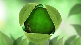 Globo di giornata per la Terra nell'ambito del ciclo delle foglie 4K stock footage