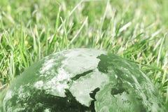 Globo e grama verdes Fotografia de Stock