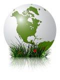 Globo ed erba della terra riflessi illustrazione di stock
