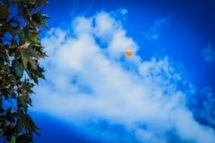 Globo en el cielo azul Imágenes de archivo libres de regalías