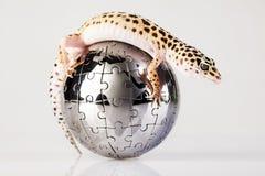 Globo en gecko fotografía de archivo libre de regalías