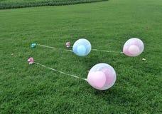 Globo rosado y azul en césped verde Fotos de archivo libres de regalías