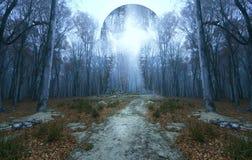 Globo sconosciuto sopra la fantasia e la foresta nebbiosa Immagini Stock