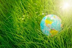 Globo su erba giorno di terra, concetto dell'ambiente Fotografia Stock Libera da Diritti