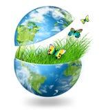 Globo sull'erba verde Immagine Stock