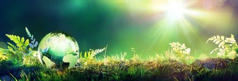 Globo verde no musgo fotografia de stock royalty free