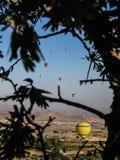 Globos del aire caliente en Cappadocia Imagen de archivo