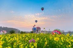 Globos del aire caliente que vuelan sobre campo de flor con salida del sol en Chiang Rai Province, Tailandia imagen de archivo