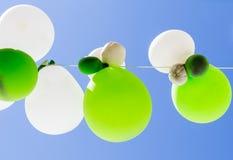 Globos del color en aire entre los árboles Foto de archivo libre de regalías