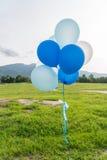 Globos del partido del azul y del blanco Imagen de archivo libre de regalías