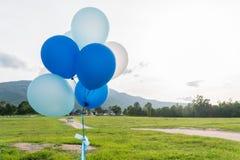 Globos del partido del azul y del blanco Fotos de archivo