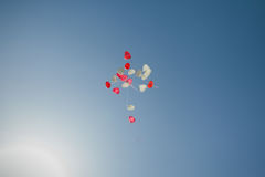 Globos en el cielo Fotografía de archivo
