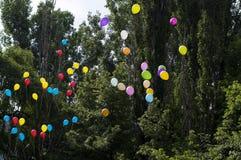 Globos en el cielo contra árboles, la escuela de la última llamada, un día de fiesta Fotos de archivo