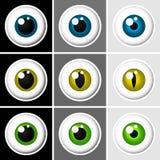 Globos oculares humanos e animais ilustração stock
