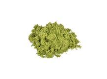 Globosa di Wolffia o alga dell'acqua dolce, pasto dell'acqua, alghe della palude immagini stock libere da diritti