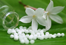Globules ομοιοπαθητικής με το βοτανικό λουλούδι Στοκ εικόνα με δικαίωμα ελεύθερης χρήσης
