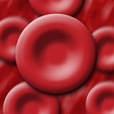 Globules rouges Images libres de droits