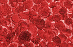 Globuli rossi astratti fotografia stock libera da diritti