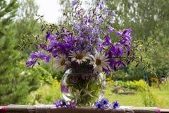 Glockenblumen und Gänseblümchen lizenzfreie stockbilder