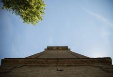Glockenturm und Baum mit versteckter Taubentaube lizenzfreie stockfotografie
