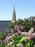 Glockenturm und blühende Fliedern Kalyazin Russland Stockfoto