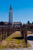 Glockenturm und wineyards Aquileia stockfotos