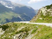 glocknerstragro för alps e Fotografering för Bildbyråer