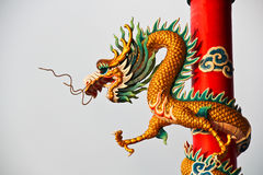 Glod china dragon in red pole Stock Image