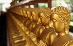 Gloden buddha staty Arkivfoton