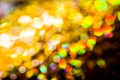 Gloden et fond de bokeh de tache floue d'arc-en-ciel Photo libre de droits