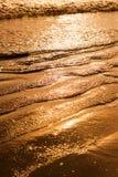 Gloden strand i aftonen arkivbild