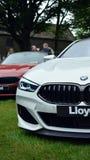 Gloednieuw BMW 8 Reeksen M royalty-vrije stock afbeeldingen